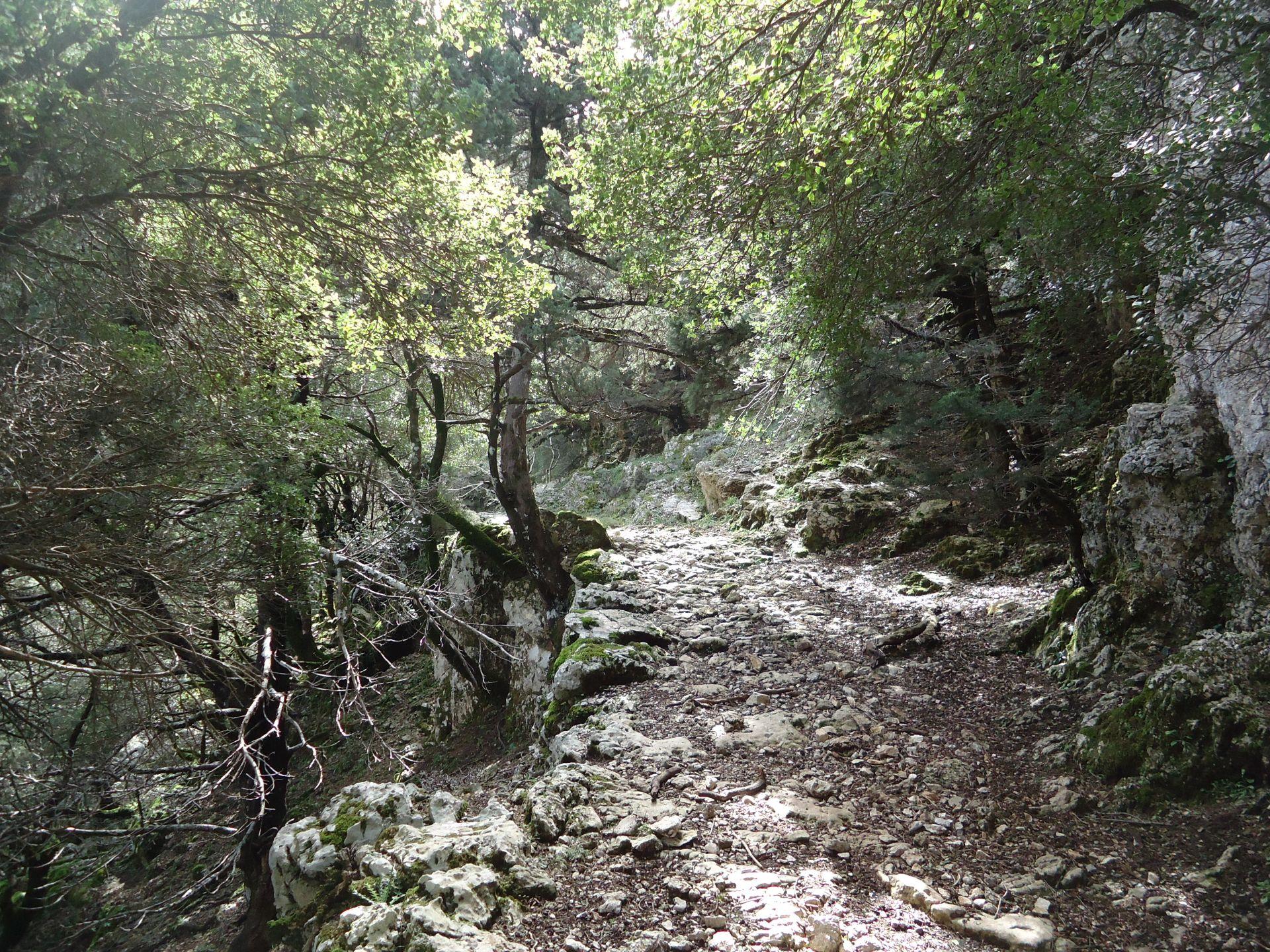 Voidodema Omalos Samaria_Evenos_Travel_2_day_hiking_trip_Omalos_2day (4)