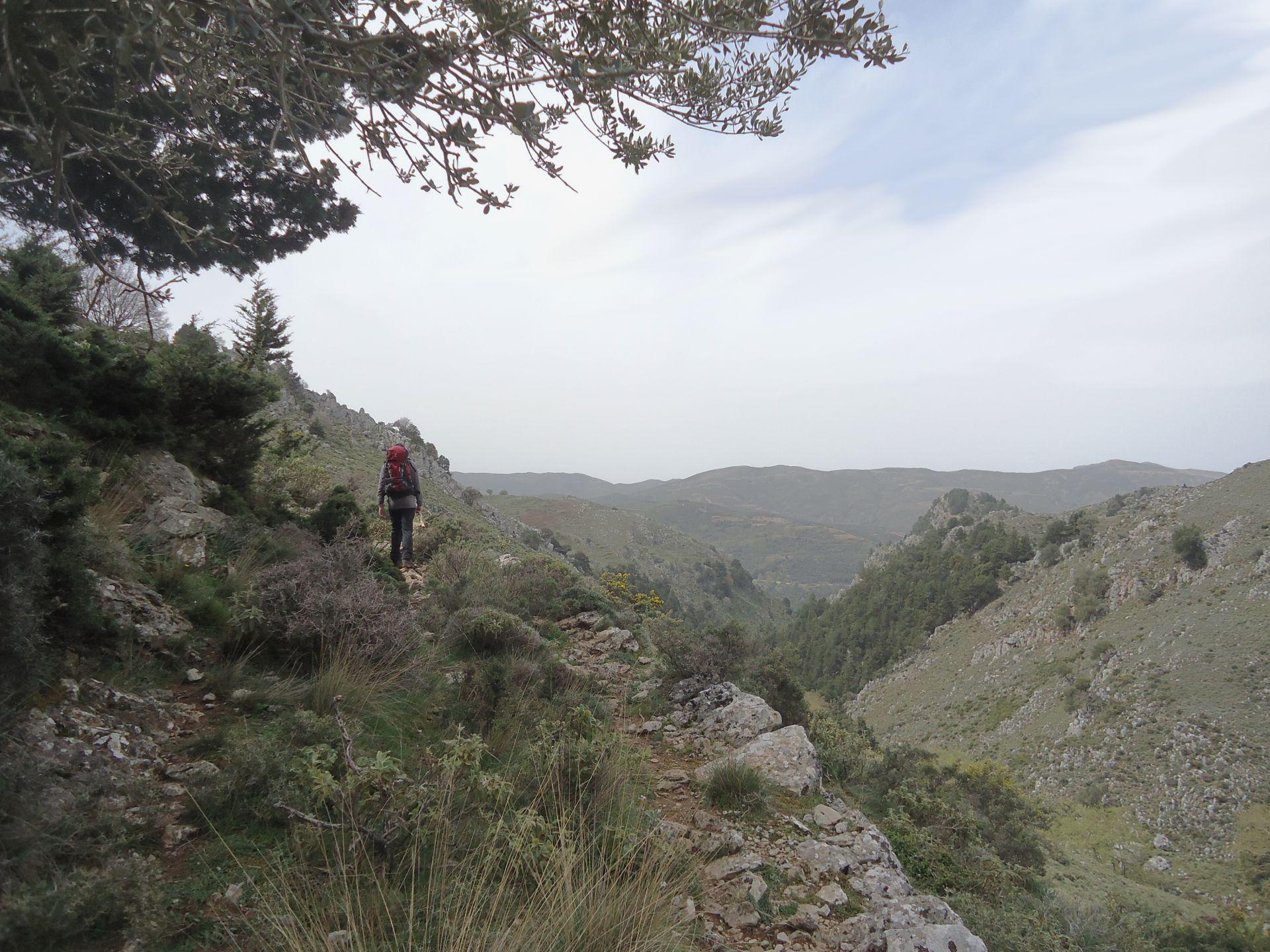 Coastal paths & mountain plains Evenos_Travel_Voidodema_Omalos_Samaria_2_day_hiking_trip_Omalos_2day (5)